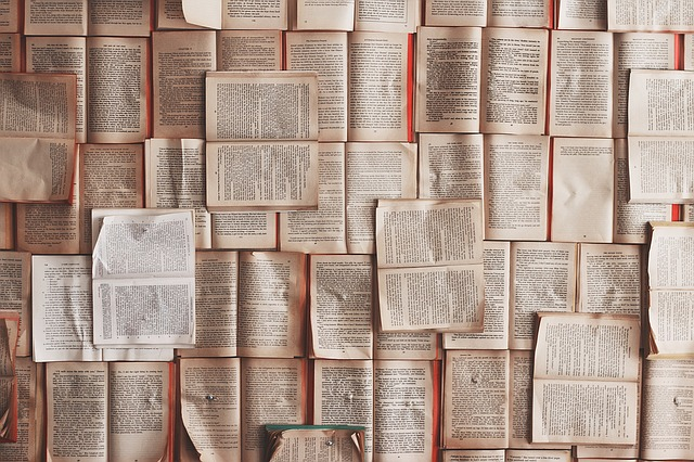 books 1245690 640 - Wirtschaftsgeschichte ist wichtiger als Volkswirtschaftslehre