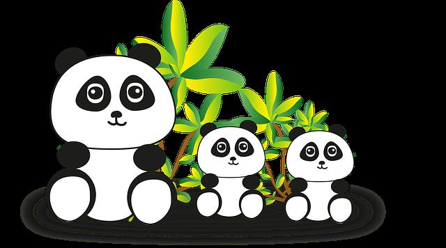 panda 2018774 640 - Die Bankenkrise in China hat ihr drittes Opfer gefunden