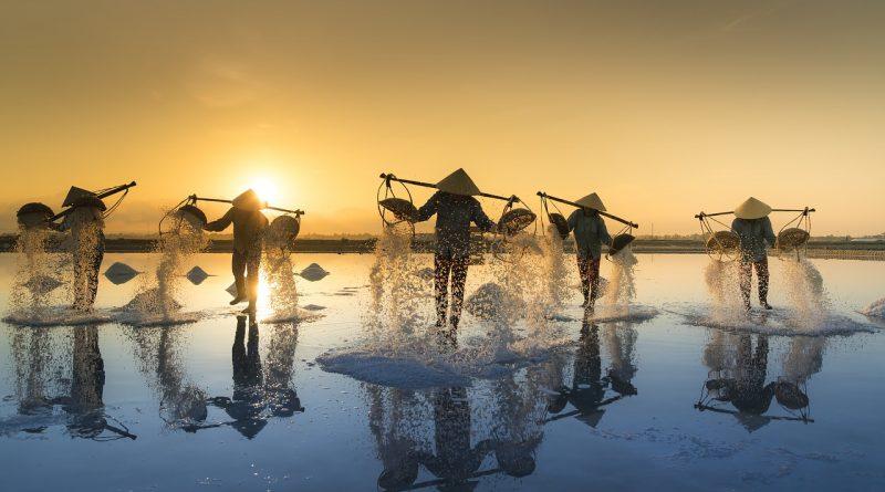 """salt harvesting 3060093 1280 800x445 - Chinesen umgehen die US-Zölle durch """"Made in Vietnam"""" Etiketten"""