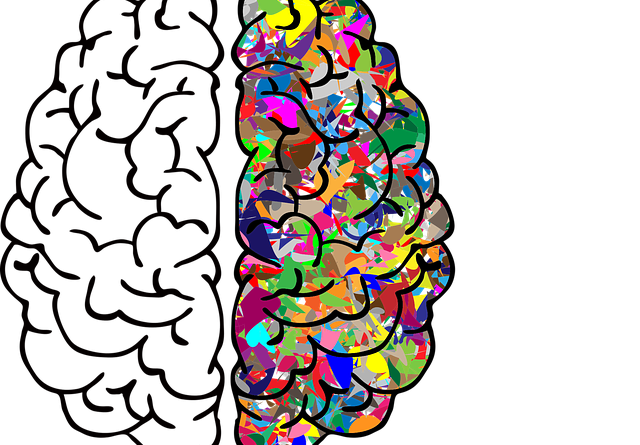 brain 2750415 640 640x445 - Das Märchen von der Künstlichen Intelligenz oder KI