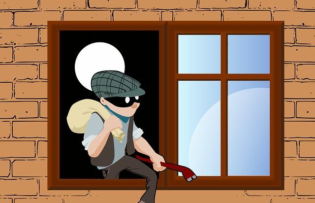 thief 4173477 640 - Was man unbedingt über die Raubwirtschaft wissen sollte